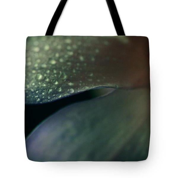 Dew Drops On Dogwood Flower  Tote Bag