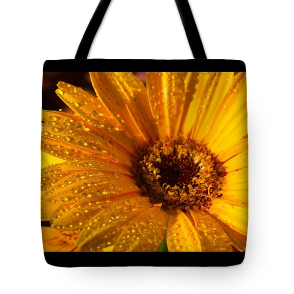 Tote Bag featuring the photograph Dew On A Daisy by Richard Stephen