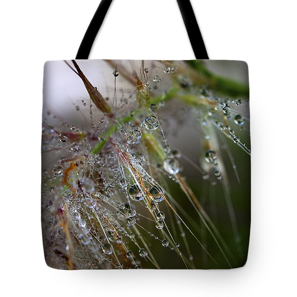 Tote Bag featuring the photograph Dew On Fountain Grass by Joe Schofield