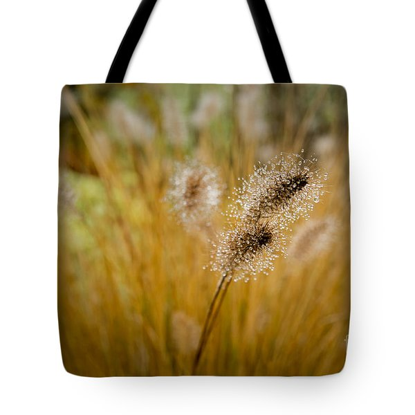 Dew On Ornamental Grass No. 4 Tote Bag