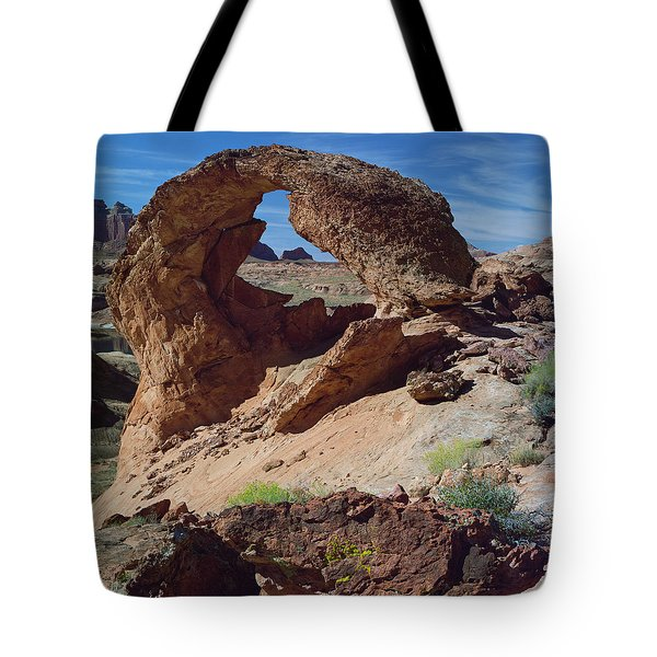 Diagenetic Arch-sq Tote Bag