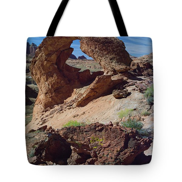 Diagenetic Arch Tote Bag