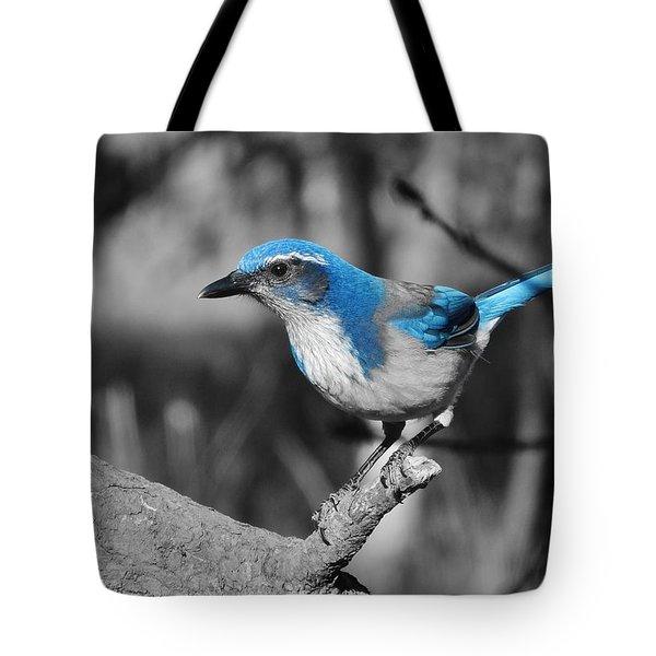 Dial Blue Tote Bag