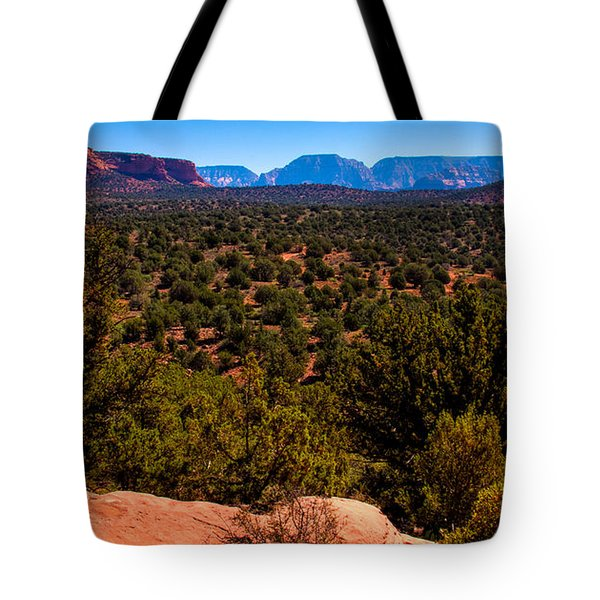 Diamondback Gulch Tote Bag by David Patterson