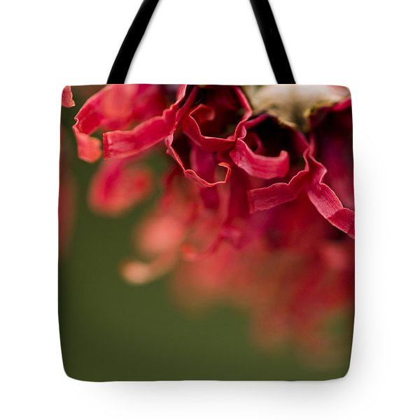 Diana The Hamamelis Tote Bag by Anne Gilbert