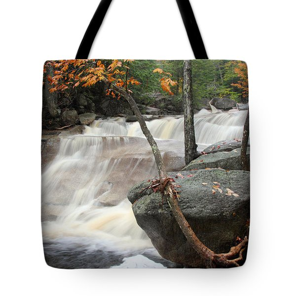 Diana's Bath Tote Bag by Brett Pelletier