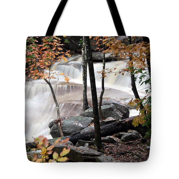 Diana's Bath Dad's View Tote Bag by Brett Pelletier