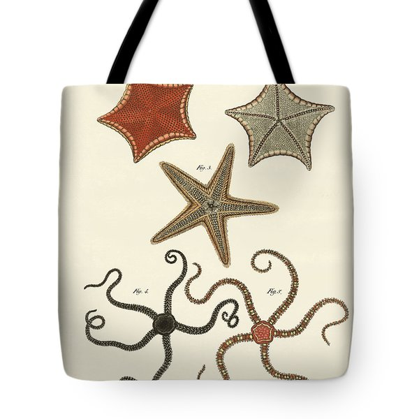 Different Kinds Of Starfish Tote Bag