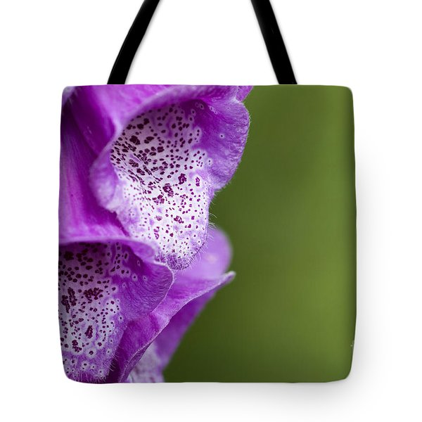 Digitalis Abstract Tote Bag by Anne Gilbert