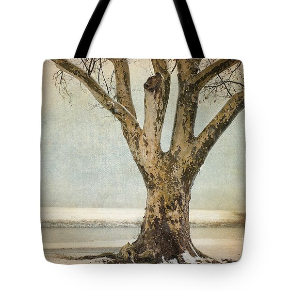 Dignity Tote Bag by Betty LaRue