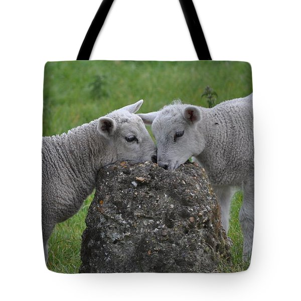 Dinner For Two Tote Bag by Teresa Tilley