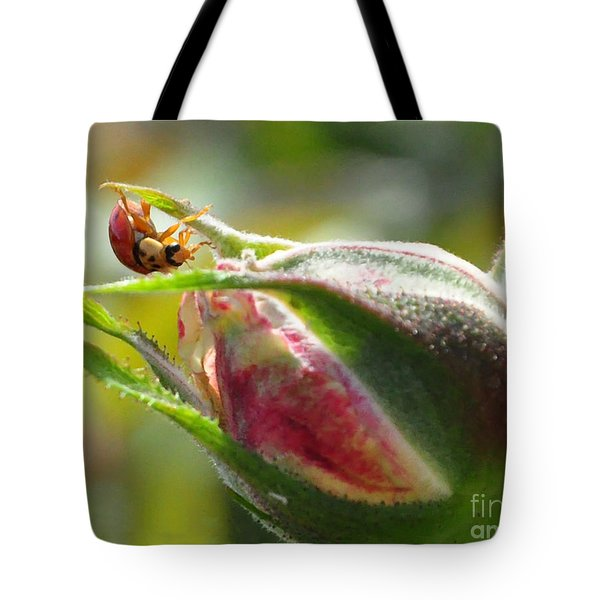 Tote Bag featuring the photograph Dinner Is Ready by Debby Pueschel