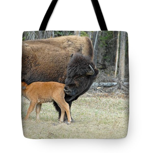 Dinner Time Tote Bag by Dyle   Warren