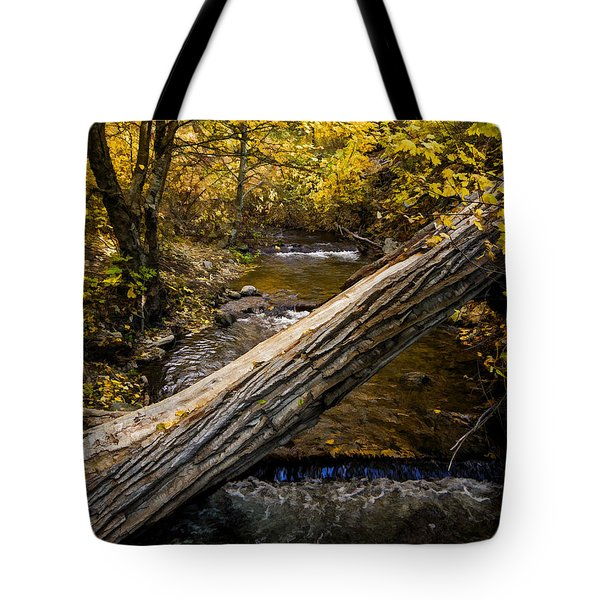 Discover Our Strengths Tote Bag by Jordan Blackstone