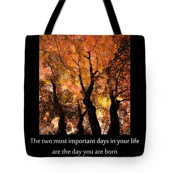 Discovery Tote Bag by Don Schwartz