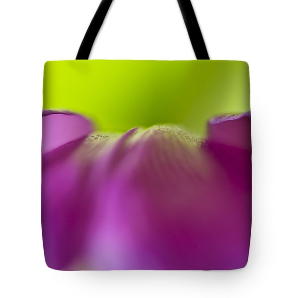 Discovery In Color Tote Bag