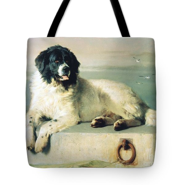 Distinguished Member Of The Humane Society Tote Bag by Pg Reproductions