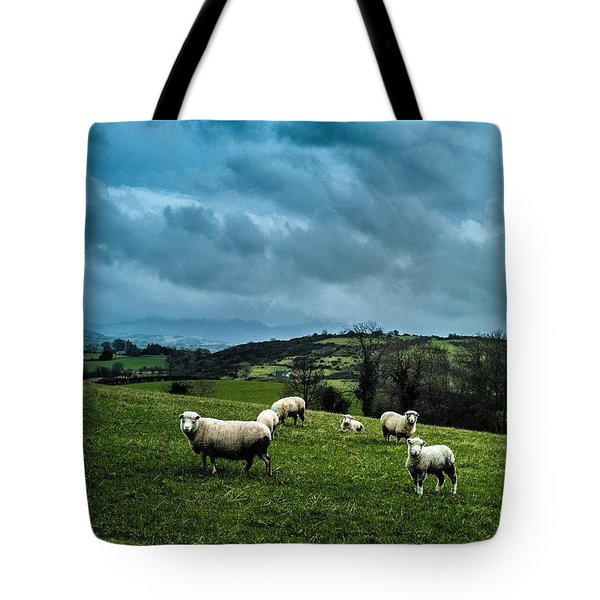 Disturbing The Sheep Tote Bag