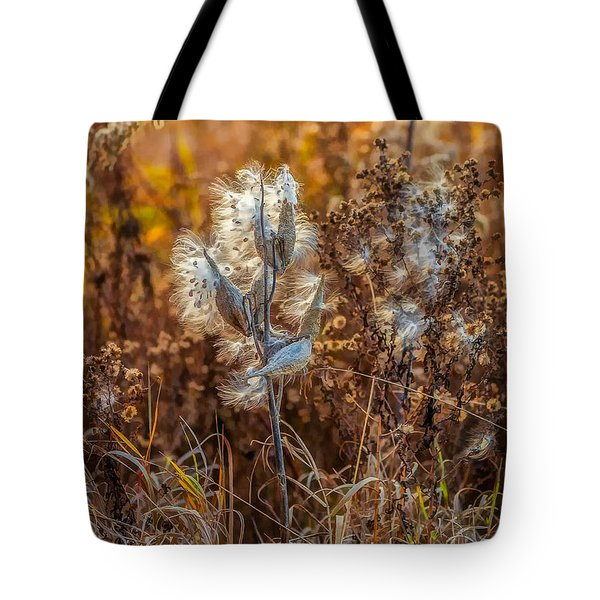 Ditch Beauty Tote Bag by Steve Harrington
