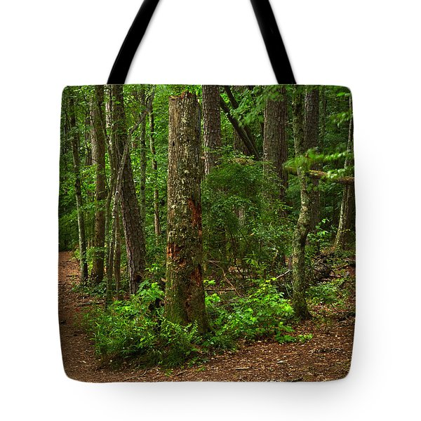 Diverted Paths Tote Bag