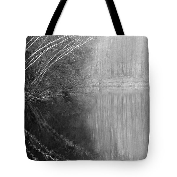 Divided By Nature Bw Tote Bag by Karol Livote