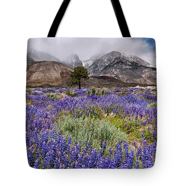 Division Creek Lupine Tote Bag