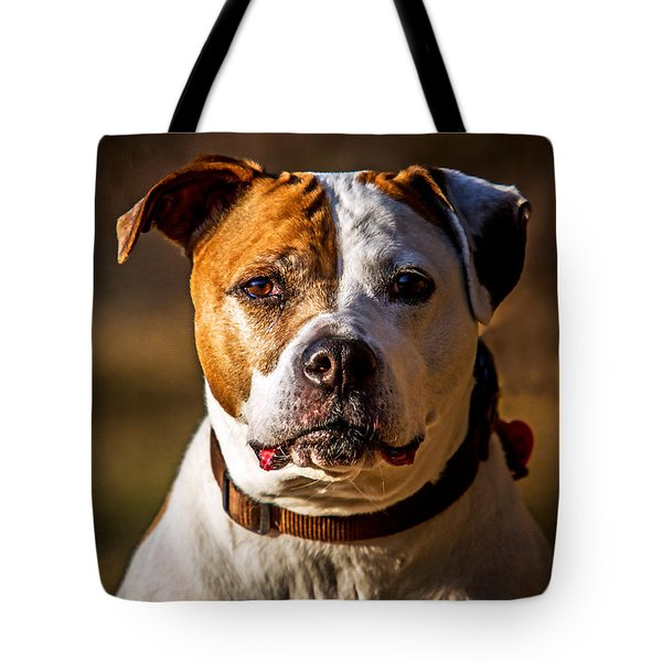 Dixie Doodle The Pit Bull Tote Bag by Eleanor Abramson