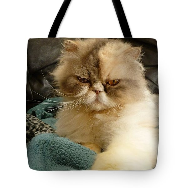 Tote Bag featuring the photograph Do I Look Amused? by Vicki Spindler