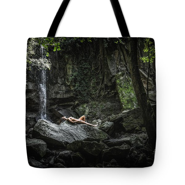 Do You Believe In Faeries Tote Bag