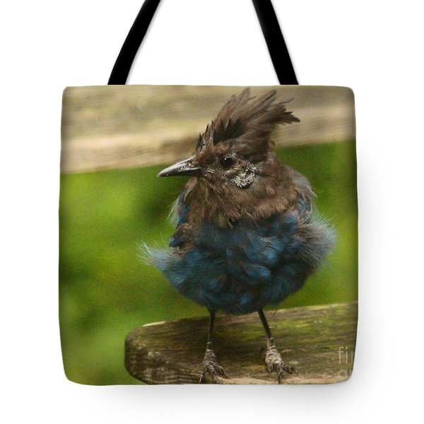 Do You Like My New Dress? Tote Bag by Kym Backland