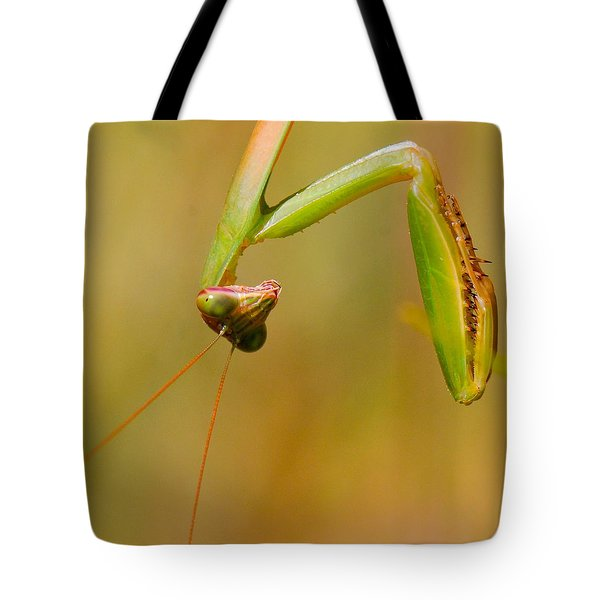 Do You Mind? Tote Bag by Amy Porter