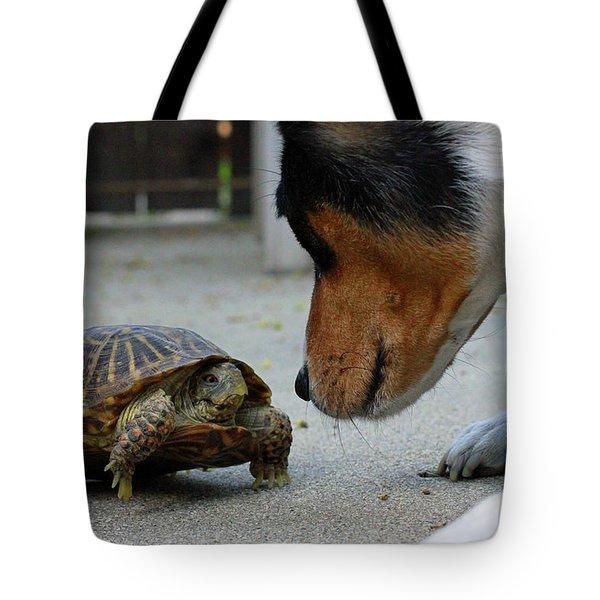 Dog And Turtle Tote Bag