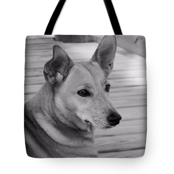 Dog In Black And White One Tote Bag