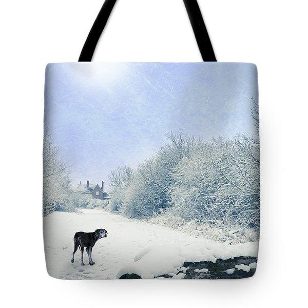 Dog Looking Back Tote Bag by Amanda Elwell
