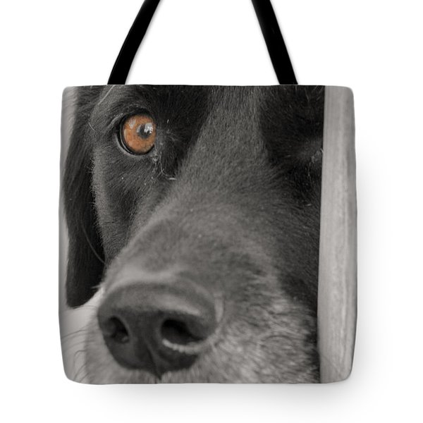 Dog Peek A Boo Tote Bag