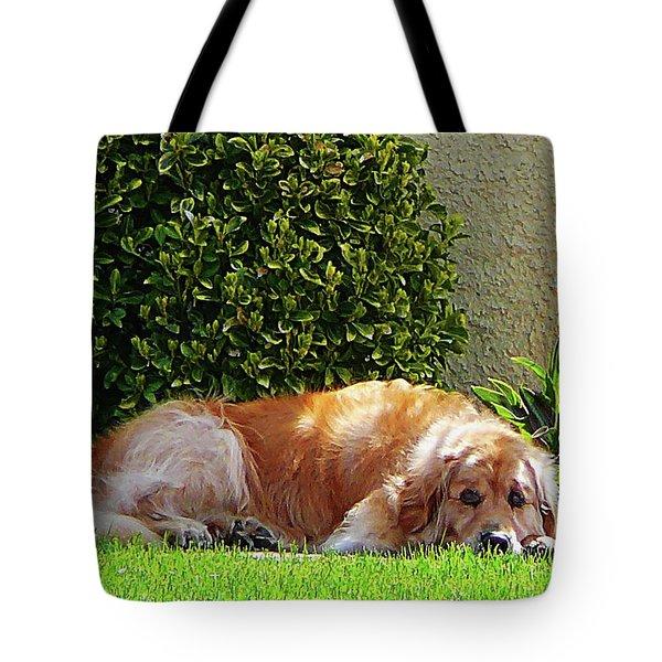 Dog Relaxing Tote Bag by Susan Savad
