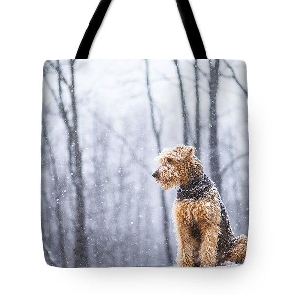Dog Sits Under The Snowfall Tote Bag