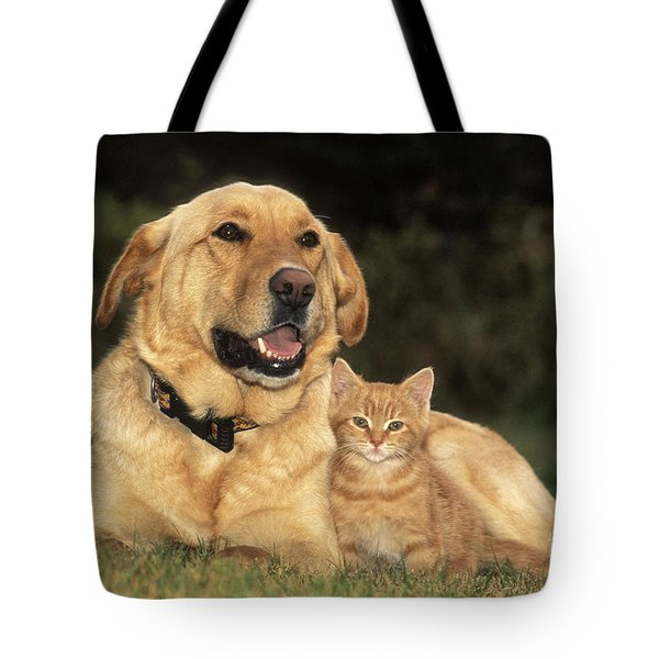 Dog With Kitten Tote Bag by Rolf Kopfle