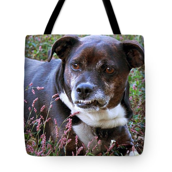 Dogg Tote Bag by Bonnie Willis