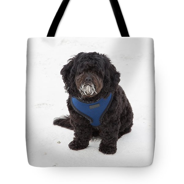 Doggone Good Beach Fun Tote Bag by John M Bailey