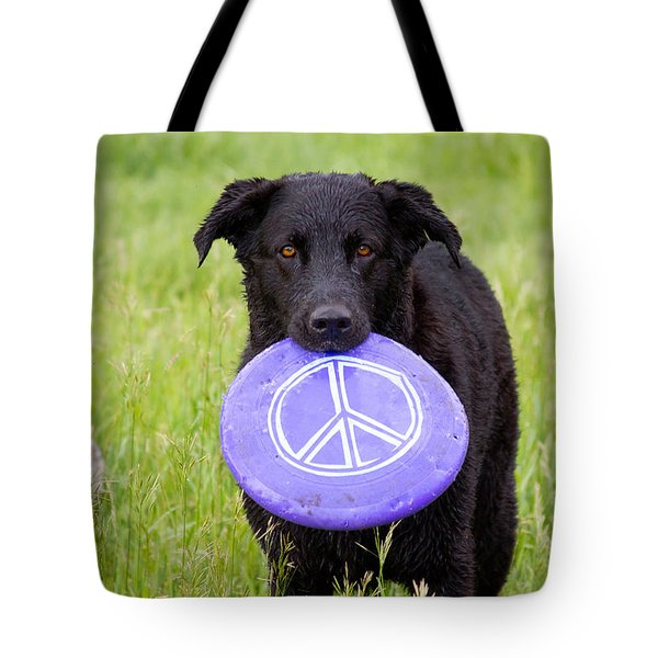 Dogs For Peace Tote Bag by James BO  Insogna