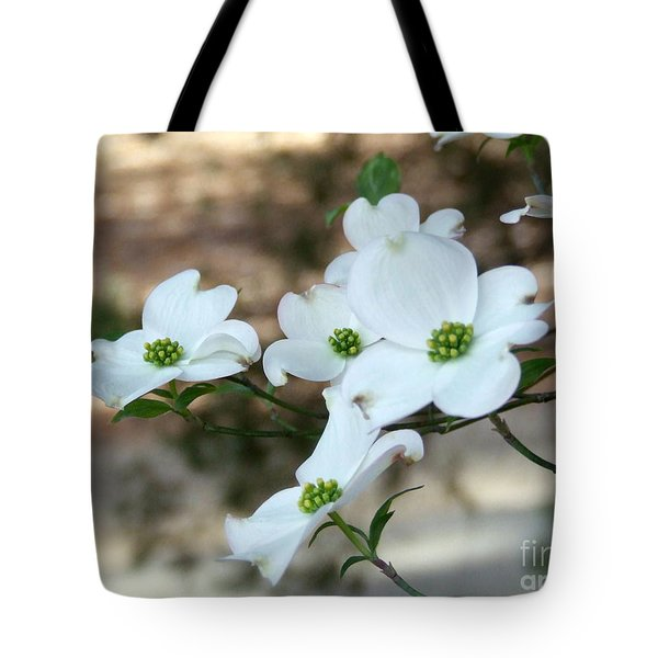 Dogwood 2 Tote Bag by Andrea Anderegg