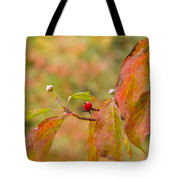 Tote Bag featuring the photograph Dogwood Berrie by Nick Kirby