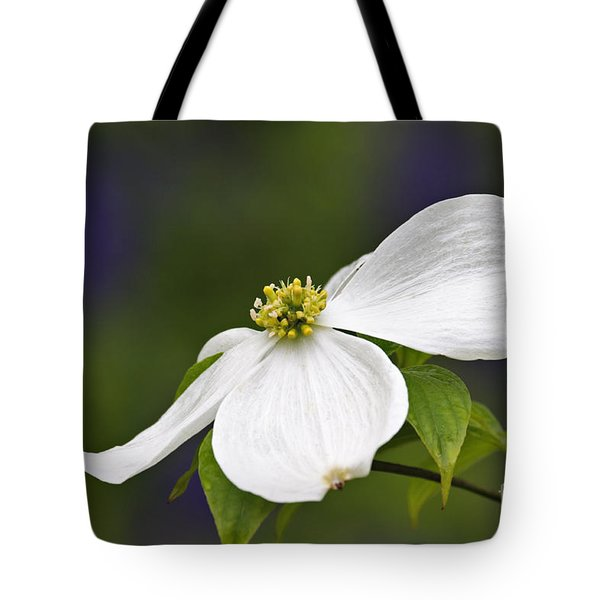 Dogwood Blossom - D001797 Tote Bag by Daniel Dempster