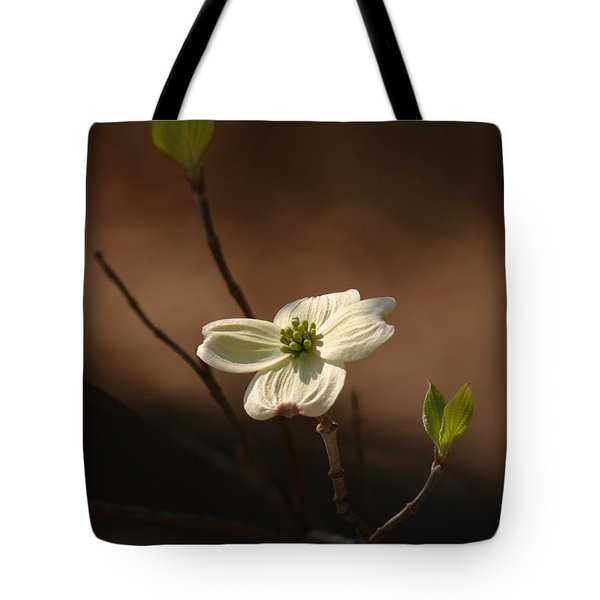 Dogwood Bokeh Painting Tote Bag