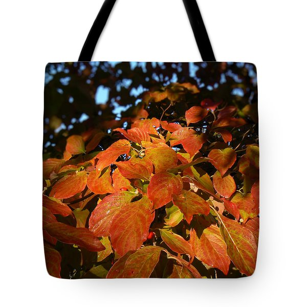 Tote Bag featuring the photograph Dogwood In Autumn Colors by MM Anderson
