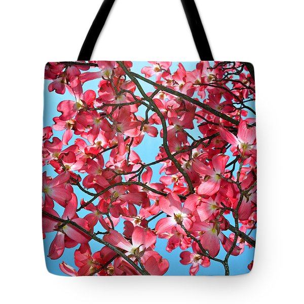 Dogwood Tree Flowers And Blue Sky Tote Bag by Eva Kaufman