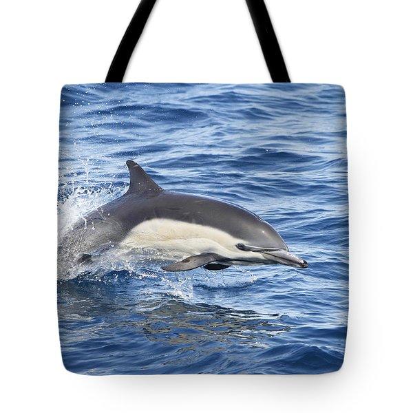 Dolphin At Play Tote Bag