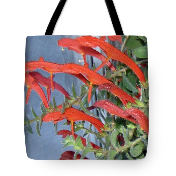 Tote Bag featuring the photograph Dolphin Plant by Brenda Brown