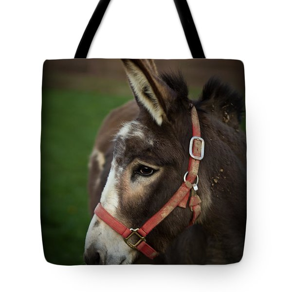 Donkey Tote Bag by Shane Holsclaw